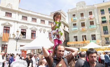 Sant Jordi en Reus (3)