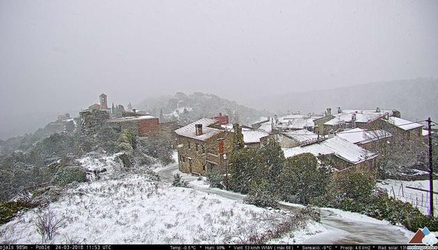 Neu a Rojals
